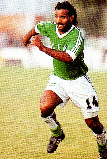 Algeria-94-95-adidas-home-kit-green-white-green.JPG
